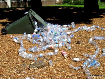 Rubbish in front of the engineering library