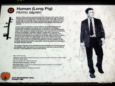 Human (Long Pig) wilderness trail sign in Sydney