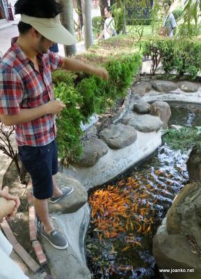 Jason feeding goldfish