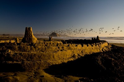 A large sand castle on the beach. It is dusk. There are many birds on the horizon.